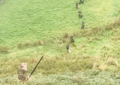 Gun Dog Field Trials Training Scottish Borders
